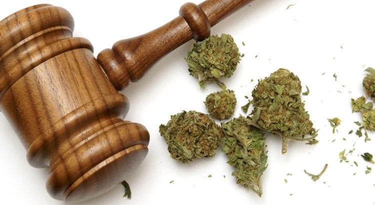cannabis cbd sans thc legal suisse que dit la loi