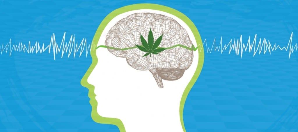 effets avis cannabis cbd