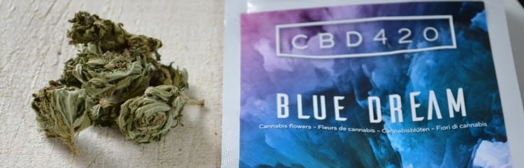 blue dream avis