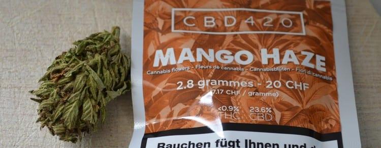 mango haze avis