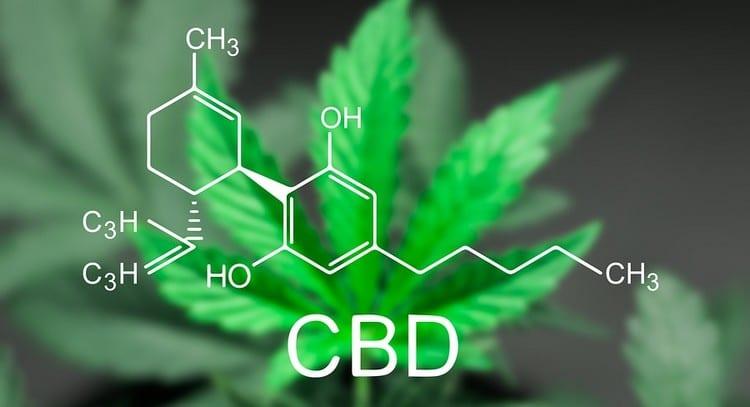 cannabis cbd legal suisse sans thc
