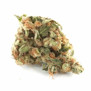 girl scout cookies bud tete seche