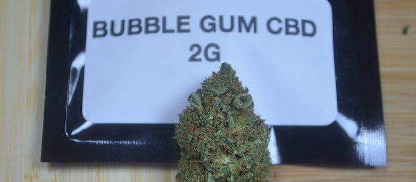 bubble-gum-cbd-en-tete