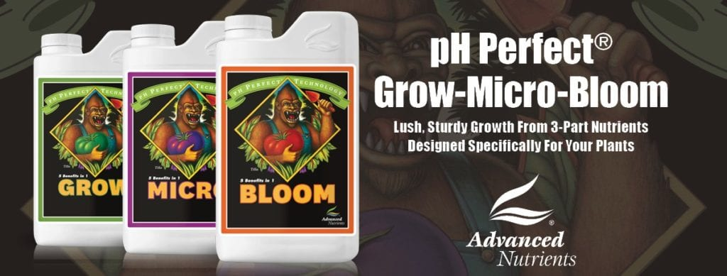 advanced nutrients grow micro bloom